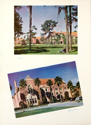 Page 16, 1941 Edition, University of Florida - Tower Seminole Yearbook (Gainesville, FL) online yearbook collection