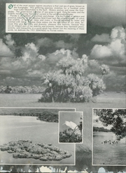 Page 14, 1951 Edition, University of Florida - Tower Seminole Yearbook (Gainesville, FL) online yearbook collection