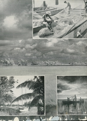 Page 15, 1951 Edition, University of Florida - Tower Seminole Yearbook (Gainesville, FL) online yearbook collection