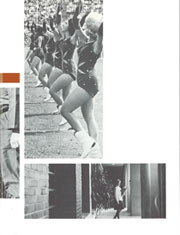 Page 245, 1965 Edition, University of Florida - Tower / Seminole Yearbook (Gainesville, FL) online yearbook collection