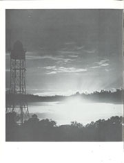 Page 368, 1965 Edition, University of Florida - Tower / Seminole Yearbook (Gainesville, FL) online yearbook collection
