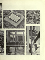 Page 11, 1967 Edition, University of Florida - Tower Seminole Yearbook (Gainesville, FL) online yearbook collection