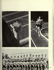 Page 273, 1967 Edition, University of Florida - Tower Seminole Yearbook (Gainesville, FL) online yearbook collection