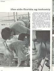 Page 178, 1970 Edition, University of Florida - Tower / Seminole Yearbook (Gainesville, FL) online yearbook collection