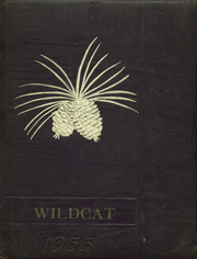 1955 Edition, Custer High School - Wildcat Yearbook (Custer, SD)