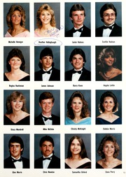 Page 17, 1987 Edition, Westmoreland High School - Yearbook (Westmoreland, TN) online yearbook collection
