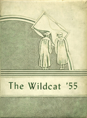 Page 1, 1955 Edition, Buchanan High School - Wildcat Yearbook (Buchanan, TN) online yearbook collection