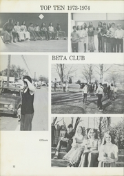Page 16, 1975 Edition, Pikeville Elementary School - Charger Yearbook (Pikeville, TN) online yearbook collection