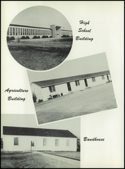 Page 12, 1954 Edition, Tulia High School - Hornet Yearbook (Tulia, TX) online yearbook collection