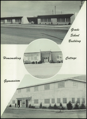 Page 14, 1954 Edition, Tulia High School - Hornet Yearbook (Tulia, TX) online yearbook collection