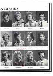 Page 135, 1987 Edition, Canyon High School - Soaring Wings Yearbook (Canyon, TX) online yearbook collection