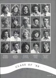 Page 139, 1987 Edition, Canyon High School - Soaring Wings Yearbook (Canyon, TX) online yearbook collection