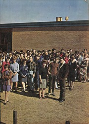 Page 3, 1967 Edition, Joshua High School - Owls Nest Yearbook (Joshua, TX) online yearbook collection