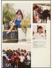 Page 7, 1983 Edition, Pharr San Juan Alamo High School - Bear Memories Yearbook (Alamo, TX) online yearbook collection