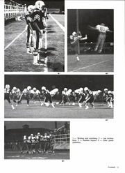 Page 15, 1987 Edition, Roscoe High School - Gleaner Yearbook (Roscoe, TX) online yearbook collection