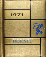 1971 Edition, Dodd City High School - Hornet Yearbook (Dodd City, TX)