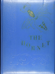 1973 Edition, Dodd City High School - Hornet Yearbook (Dodd City, TX)