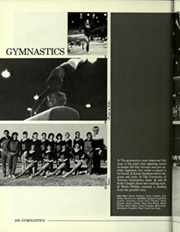 Page 242, 1984 Edition, University of Arizona - Desert Yearbook (Tucson, AZ) online yearbook collection