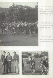 Page 12, 1950 Edition, Norview High School - Pilot Yearbook (Norfolk, VA) online yearbook collection
