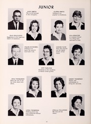Page 64, 1961 Edition, Bluestone High School - Golden Link Yearbook (Skipwith, VA) online yearbook collection
