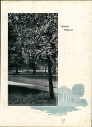 Page 17, 1929 Edition, Lynchburg College - Argonaut Yearbook (Lynchburg, VA) online yearbook collection