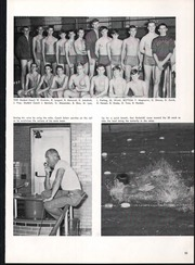 Page 69, 1967 Edition, Pulaski High School - Cavalier Yearbook (Milwaukee, WI) online yearbook collection