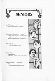 Page 15, 1911 Edition, Madison Central High School - Tychoberahn Yearbook (Madison, WI) online yearbook collection