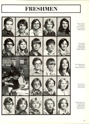 Racine Lutheran High School - Citadel Yearbook (Racine, WI) online yearbook collection, 1978 Edition, Page 41