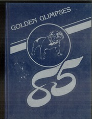 1985 Edition, Jasper Central School - Golden Glimpses Yearbook (Jasper, NY)