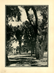 Page 14, 1931 Edition, Alfred University - Kanakadea Yearbook (Alfred, NY) online yearbook collection