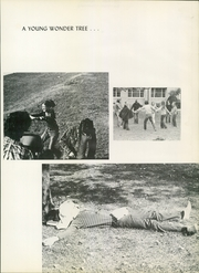 Page 15, 1971 Edition, Hofstra University - Nexus Yearbook (Hempstead, NY) online yearbook collection