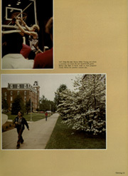 Page 17, 1981 Edition, University of Arkansas - Razorback Yearbook (Fayetteville, AR) online yearbook collection