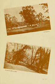 Page 15, 1928 Edition, Austin High School - Austinian Yearbook (Austin, MN) online yearbook collection