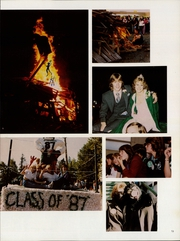 Page 17, 1984 Edition, Mount Vernon High School - Skagina Yearbook (Mount Vernon, WA) online yearbook collection