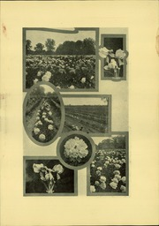 Page 9, 1926 Edition, Van Wert High School - Excalibur Yearbook (Van Wert, OH) online yearbook collection