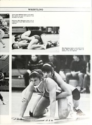 Page 119, 1985 Edition, Wayne High School - Sentry Yearbook (Fort Wayne, IN) online yearbook collection
