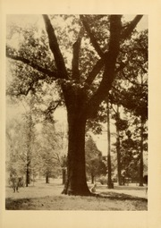Page 17, 1928 Edition, Athens State College - Columns Yearbook (Athens, AL) online yearbook collection