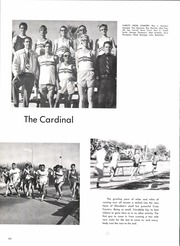 Page 68, 1969 Edition, Glendale High School - Cardinal Yearbook (Glendale, AZ) online yearbook collection