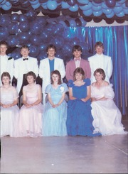 Page 3, 1987 Edition, Amity High School - Reflector Yearbook (Amity, AR) online yearbook collection
