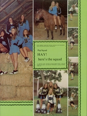 Page 17, 1975 Edition, Buena High School - Conquistador Yearbook (Ventura, CA) online yearbook collection