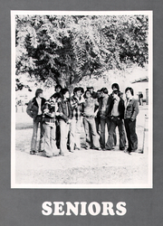 Page 14, 1978 Edition, Dinuba High School - Delphic Echoes Yearbook (Dinuba, CA) online yearbook collection