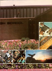 Page 7, 1981 Edition, Adams City High School - Eagle Yearbook (Commerce City, CO) online yearbook collection