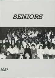 Page 11, 1987 Edition, The Morgan School - Tower Yearbook (Clinton, CT) online yearbook collection