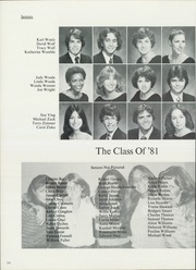 Page 228, 1981 Edition, H B Plant High School - Panther Yearbook (Tampa, FL) online yearbook collection