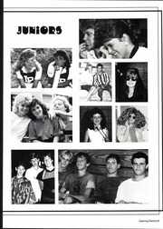 Page 9, 1987 Edition, Lake Placid High School - Argus Yearbook (Lake Placid, FL) online yearbook collection