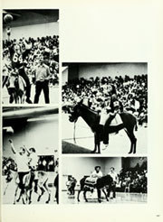 Page 171, 1980 Edition, La Serna High School - Pennon Yearbook (Whittier, CA) online yearbook collection