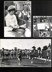 Page 10, 1983 Edition, Limestone Community High School - Amulet Yearbook (Bartonville, IL) online yearbook collection