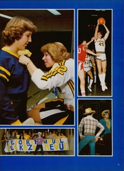 Page 15, 1981 Edition, Thornwood High School - Thunderbird Yearbook (South Holland, IL) online yearbook collection