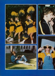 Page 16, 1981 Edition, Thornwood High School - Thunderbird Yearbook (South Holland, IL) online yearbook collection