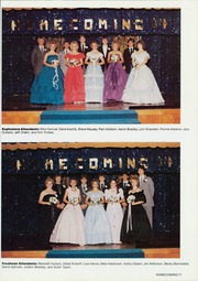 Page 15, 1985 Edition, Carterville High School - Lionite Yearbook (Carterville, IL) online yearbook collection